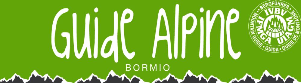 Guide Alpine Bormio
